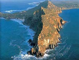 Scandiafrica.com Seal Island Cape Town Sydafrika